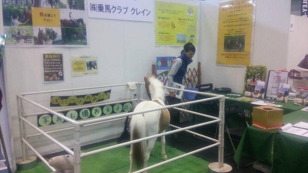 アクティブシニアフェア乗馬ブース写真