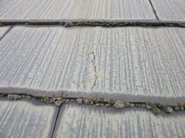 屋根は全体的に色あせています。コケの繁殖もみられます(>_<)